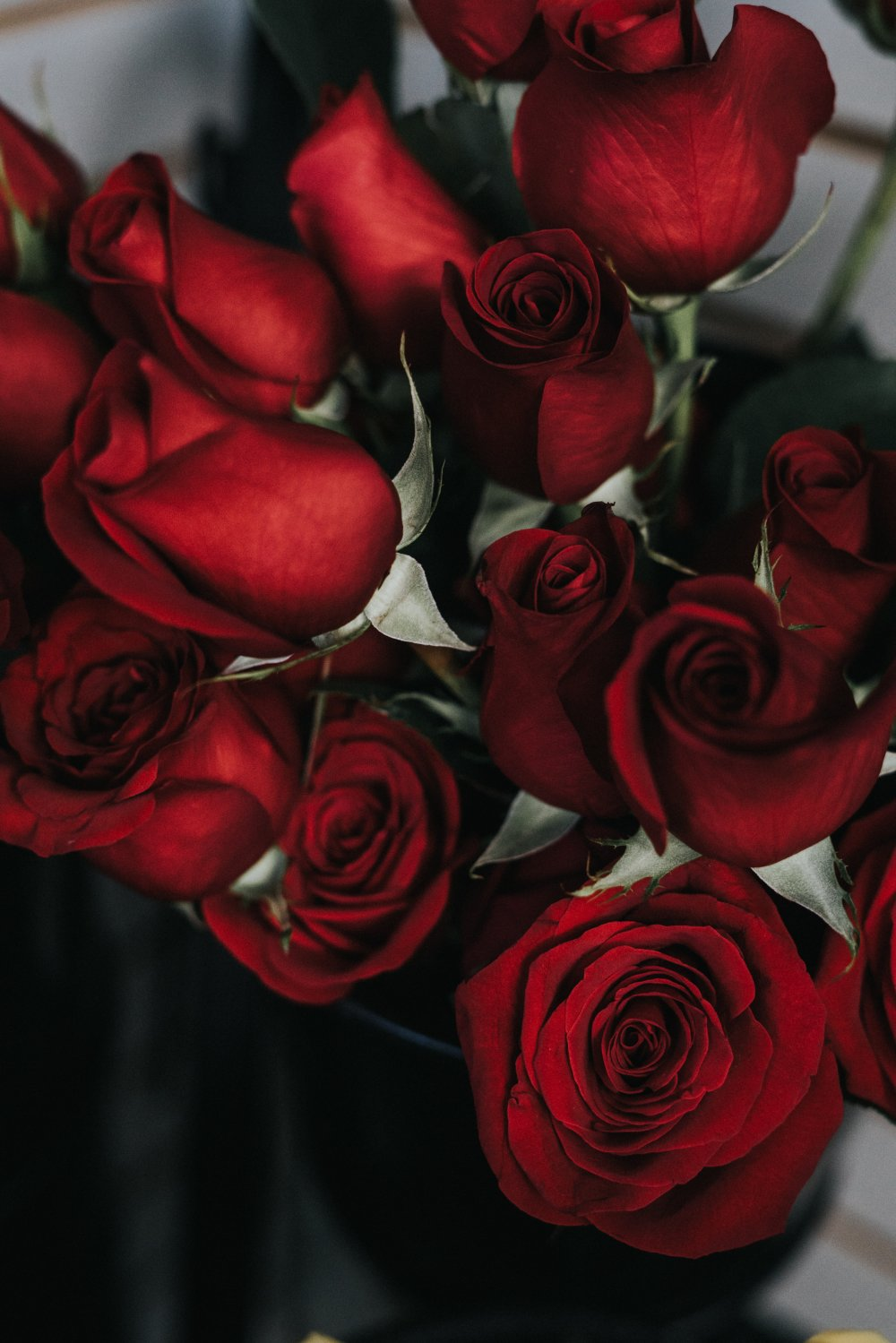 Giv blomster til dem som fortjener det